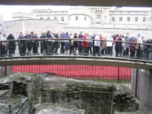 The crowds admiring the poppy installation at the Tower of London, 6 November 2014. © IAL